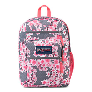 Pink Backpacks & Bookbags | JanSport