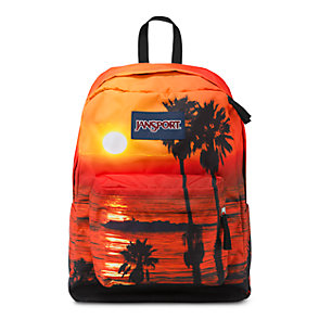 High Stakes Backpack in Multi Laguna Beach | Bag of the Day